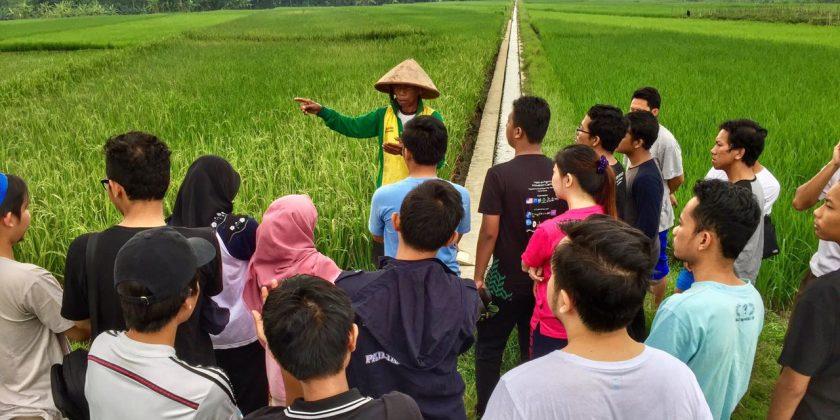 Agradaya Inisiatif yang Memberdayakan Potensi Desa Lewat Industri Pangan